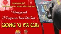 こんにちは!コニです。 ヒロチャンはニュピ以外は364日稼働しているため、 バリ島の祝休日にうといコニですが、 ここ最近、街で赤とゴールドのおめでたい柄や広告を見ると思っていたら、 中国旧正月が近付いていたんですね!! ...