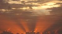 """日本の夏、いかがお過ごしですか? バリ島は8月11日のインドネシア独立記念日を終え、今はイスラム教徒のラマダーン月に入っています。 この時期に行われるのが """"断食(プアサ)""""  日の出から日没まで..."""