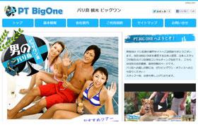 PT.BIG ONE