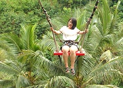 Uma Pakel Bali Swing1