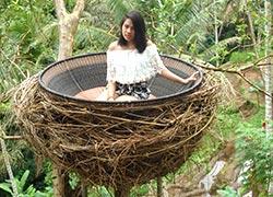 Uma Pakel Bali Swing3