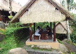 Uma Pakel Bali Swing6