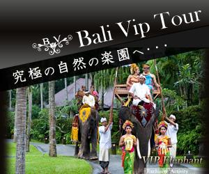 バリ島 観光 ツアー  山遊び Bali Vip Tour 究極の自然の楽園へ・・・