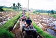 バリ島 観光 アクティビティ写真1