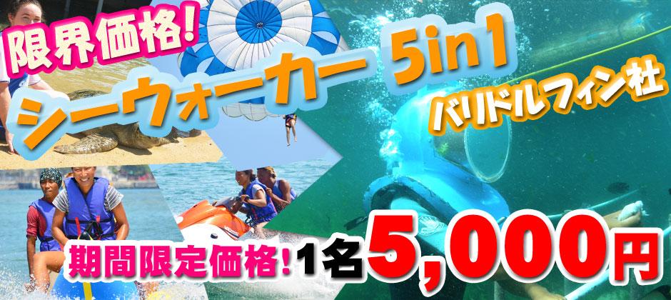 バリ島 限界価格!シーウォーカー・パッケージ5in1 Bali Dolphin社!期間限定価格!1名5,000円~
