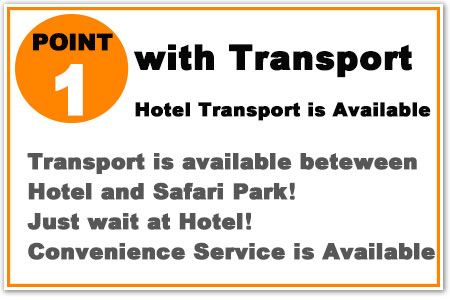 Transport between hotel and Bali trail is available! Just wait at hotel! Its Convenience service!