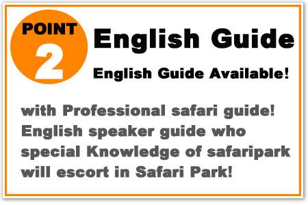 with Professional safari guide! English speaker guide will escort in Safari Park!