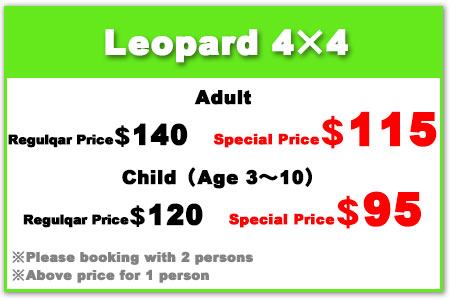 Leo Pard 4×4 Adult$115, Child $95