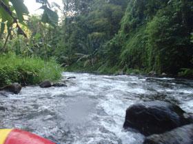 比較的流れの速い川