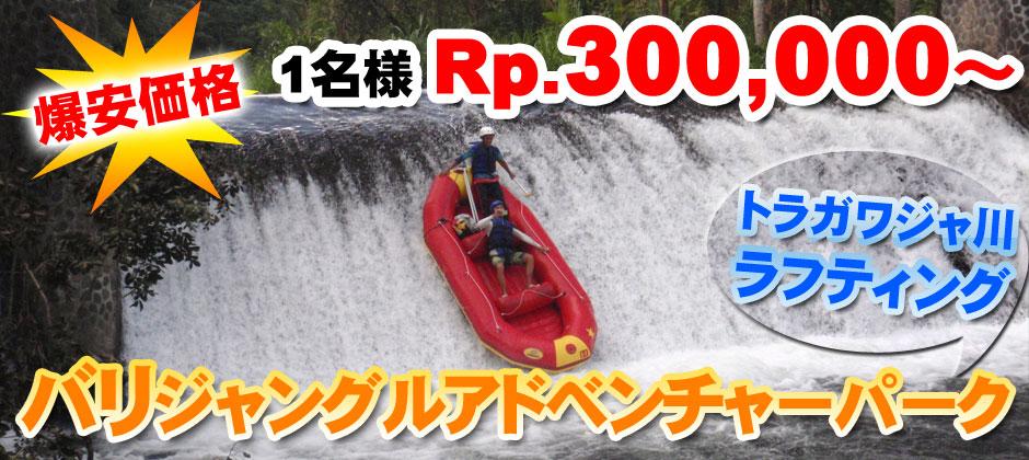 激安価格!1名様Rp.300,000~ バリジャングルアドベンチャーパーク トラガワジャ川ラフティング