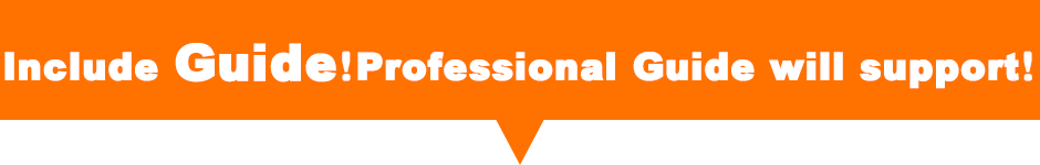 Include guide! Professional guide will support your sightseeing