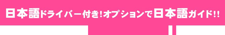 日本語ドライバー付き!オプションで日本語ガイド!