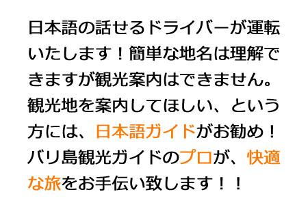 日本語の話せるドライバーが運転いたします!簡単な地名は理解できますが観光案内はできません。観光地を案内してほしい、という方には、日本語ガイドがお勧めです。