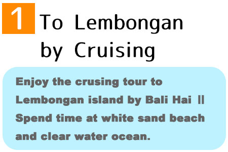Enjoy the crusing tour to Lembongan island by Bali Hai. Spend time at white sand beach and clear water ocean.
