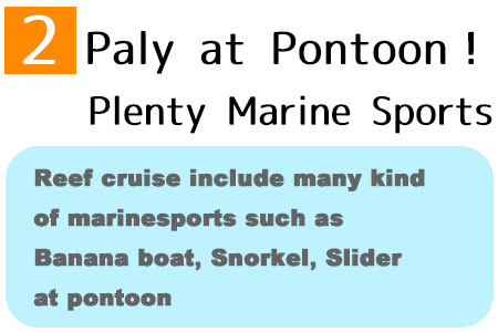 Reef cruise include many kind of marinesports such as Banana boat, Snorkel, Slider at pontoon