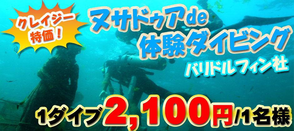 バリ島クレイジー特価!ヌサドゥアde体験ダイビング(バリ ドルフィン社)!1ダイブRp.250,000/1名