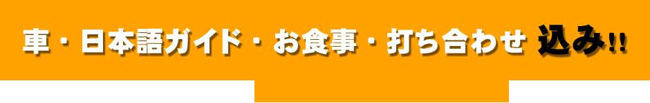 車・日本語ガイド・お食事・打ち合わせ 込み!