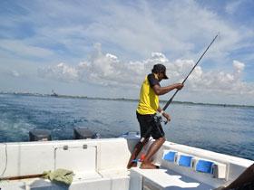 青い海で釣り