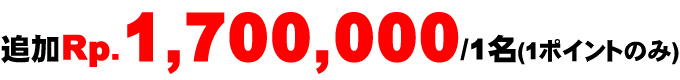 追加Rp.1,700,000 /1名(1ポイントのみ)