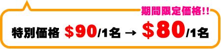 ドルフィンウォッチパック 特別料金$90/1名→期間限定価格!$80/1名