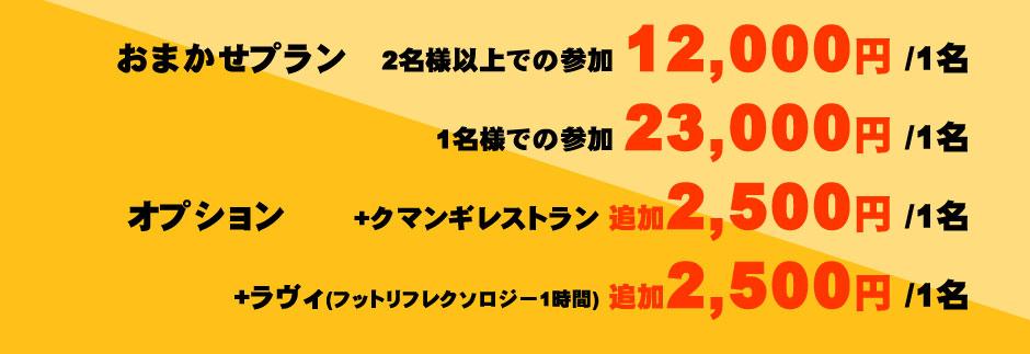 【おまかせプラン】2名様以上での参加12,000円/1名、1名様での参加23,000円/1名 【オプション】+クマンギレストラン追加2,500円/1名、+ラヴィ マッサージ1時間追加2,500円/1名