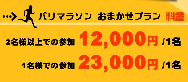 【おまかせプラン】2名様以上での参加12,000円/1名、1名様での参加23,000円/1名