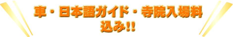 車・日本語ガイド・寺院入場料 込み!!