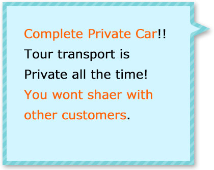 You wont share with other customer! Its all private charter all day!