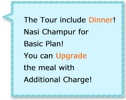 Tour with dinner! Popular Indonesian meal Nasi Champur for basic plan! You can upgrade with additional fee