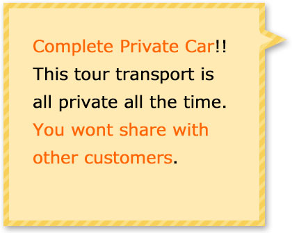 This tour transport is all private. You wont share with other customers.