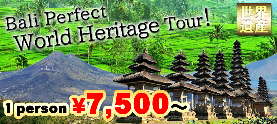 Bali perfect world heritage tour! Visit all world heritage spot in Bali! 1 person \7,500~