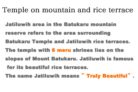 Jatiluwih area in the Batukaru mountain reserve refers to the area surrounding Batukaru Temple and Jatiluwih rice terraces. It is located approximately an hour drive from Ubud. Batukaru Temple was built in the period of Tabanan kingdom.