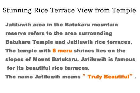 Jatiluwih area in the Batukaru mountain reserve refers to the area surrounding Batukaru Temple and Jatiluwih rice terraces. It is located approximately an hour drive from Ubud. Batukaru Temple was built in the period of Tabanan kingdom. The temple with 6 meru shrines lies on the slopes of Mount Batukaru. Not many tourists visiting this temple.
