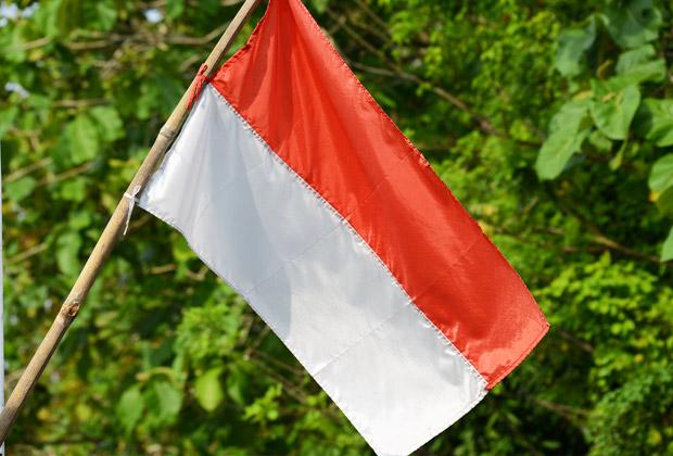 バリ島 観光 インドネシア共和国独立記念日