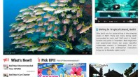 HIRO-Chan's Diving page is now renewal!! Diving in great visibility of the deep sea. Bali provides lots ...