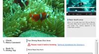 Please check HIRO-Chan Diving Fun Dive Nusa Dua OPEN!!! Fun dive spot Nusa Dua OPEN!!! Diving is one of the po...