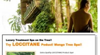 HIRO-Chan Popular Spa Mango Tree Spa OPEN!!! Popular Spa Mango Tree spa ! As its name suggests their treatment...