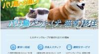 ヒロチャングループ バリ島 コンサルタント ペット(犬、猫等)移住スペシャルページが公開されました!年々移住地として人気が出てきており、毎年移住希望の方が多く訪れています。日本からペットと一緒にバリ島で暮らしたい、日本に...