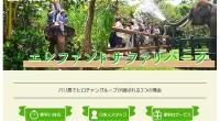 ヒロチャングループ バリ島 厳選アクティビティ エレファントサファリパークスペシャルページが公開されました!エレファント下がりパークで象乗り体験!象本来の生息環境にパーク内の環境がより近い「象の楽園」エレファントサファリ...
