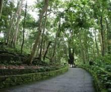 バリ島☆PTヒロチャン・スタッフブログ