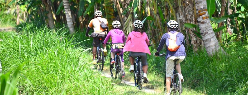 act-sobek-cycling