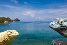 バリ島 観光Komodo Tour