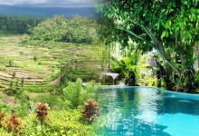 バリ島 観光Ubud & Stunning View & Hot Spring +Tasty Chinese Tour!