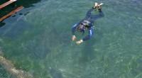 2014年10月2日、バリ島のサヌール近くにあるスランガンサーフィン社のポントゥーンでサメとスティングレイと泳げる、Ocean Park Eco TourへマルッチとDiving撮影兼・Wedding専属カメラマンのクマ...