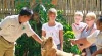 バリズーで、ライオンと記念撮影 バリ島で、たいていの観光地を制覇してしまった人は、南部リゾートエリアからウブドに向かう途中、シンガパドゥにあるバリズーに行ってみてはいかがでしょう?? 熱帯林に囲まれたジャングルのような敷...