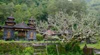 2012年4月4日、トルニャン村ツアーの取材に行ってきました。この村はバリ島中部の避暑地、キンタマーニ高原のバトゥール山の麓にあります。人口約600人の閉鎖的な村なので、メジャーな観光スポットとしてはあまり紹介されません...