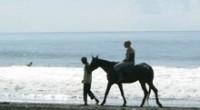 2009年3月某日。サヌールの北、サバ・ビーチで行われているホースライディングに行ってきました! この日は午前中にホースライディング、午後はキャメルサファリという取材2本立て。乗馬は地元・長野県の高原で乗ったことがあるよ...
