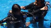 2012年9月8日、バリビューダイブセンターでライセンス取得コースを体験してきました!ダイビング初体験ですが、日本人経営のダイブセンターということでサポートは万全!?思い切って行ってきます♪  クラスルームへ...