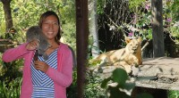 2015年8月4日。ヒロチャングループに多くのお問い合わせを頂いているバリズーの取材へ行ってきました。 クタエリアから約1時間ほどの場所にあるバリズーは、バリ島内のどこからもアクセスが簡単な場所にあります。豊富な自然と恵...