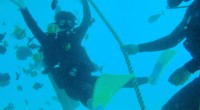 2012年9月15日、ベノアハーパーを出発するバリハイⅡ号でレンボガン島へ行ってきました♪ 今回はバリハイ社でお得なクルージング+体験ダイビングのパッケージがはじまったとのことで、さっそく 取材させていただけることに! ...